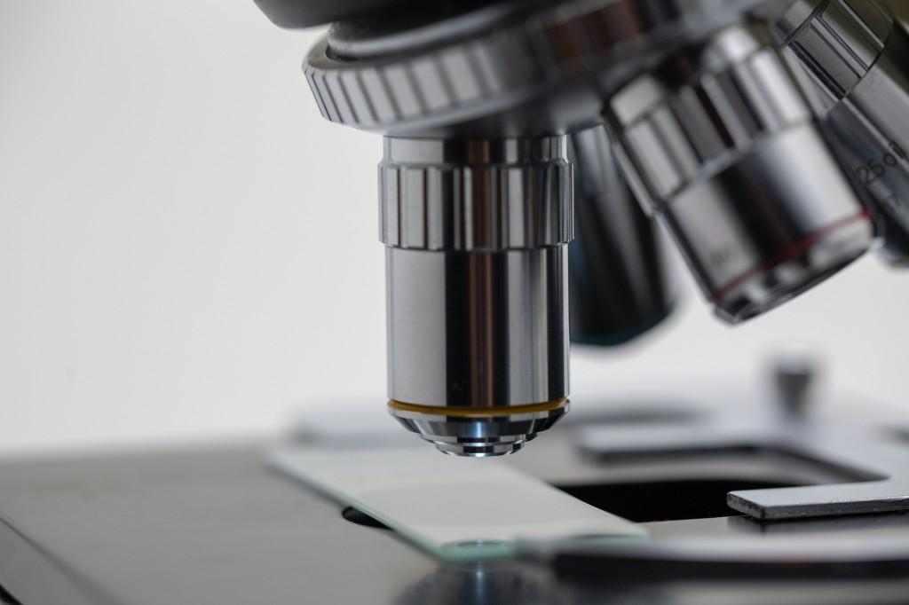 biological import licencing